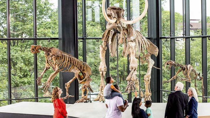 20 Top Things to Do in Seattle in 2020: Burke Museum