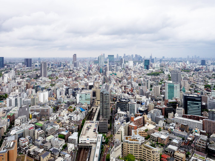 11 Best Places to View the Tokyo Skyline for Free: Carrot Tower (Setagaya City)