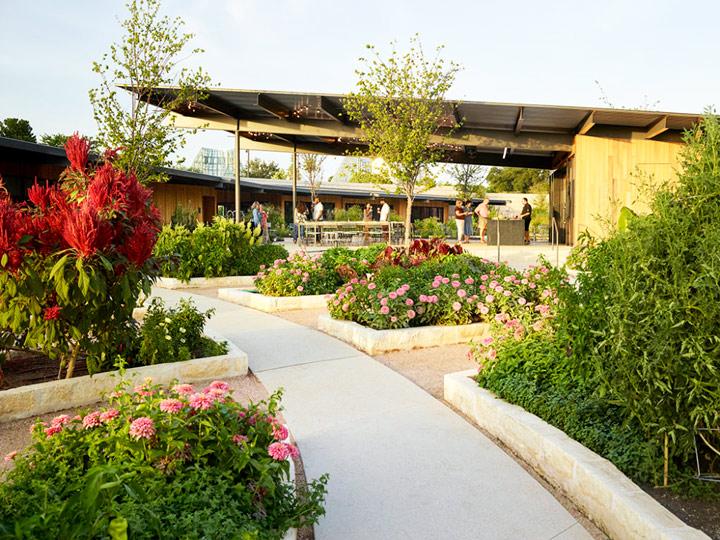 Things to do in San Antonio Texas: Follow your senses through the San Antonio Botanical Garden