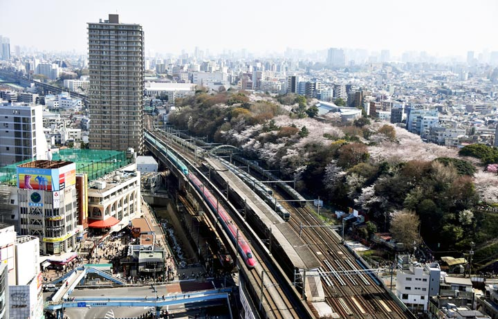 11 Best Places to View the Tokyo Skyline for Free: Hokutopia (Kita City)