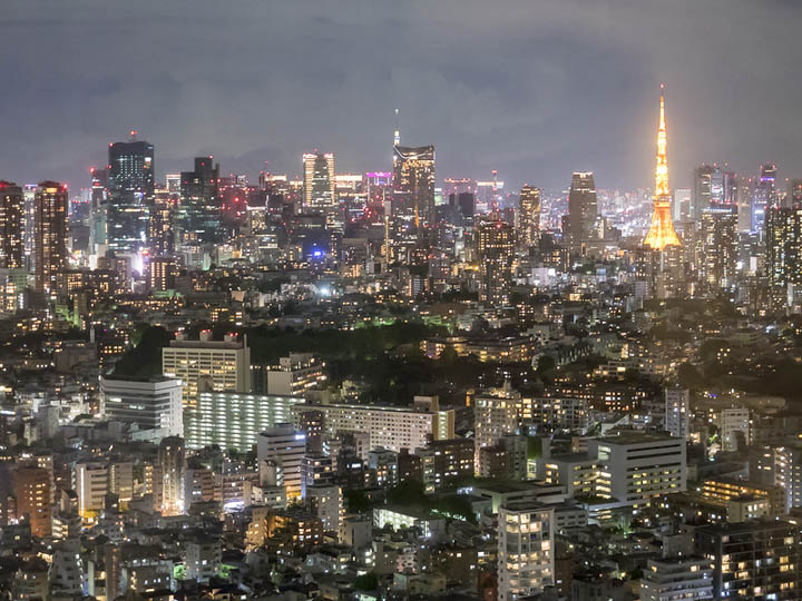 11 Best Places to View the Tokyo Skyline for Free: Yebisu Garden Place (Shibuya City)