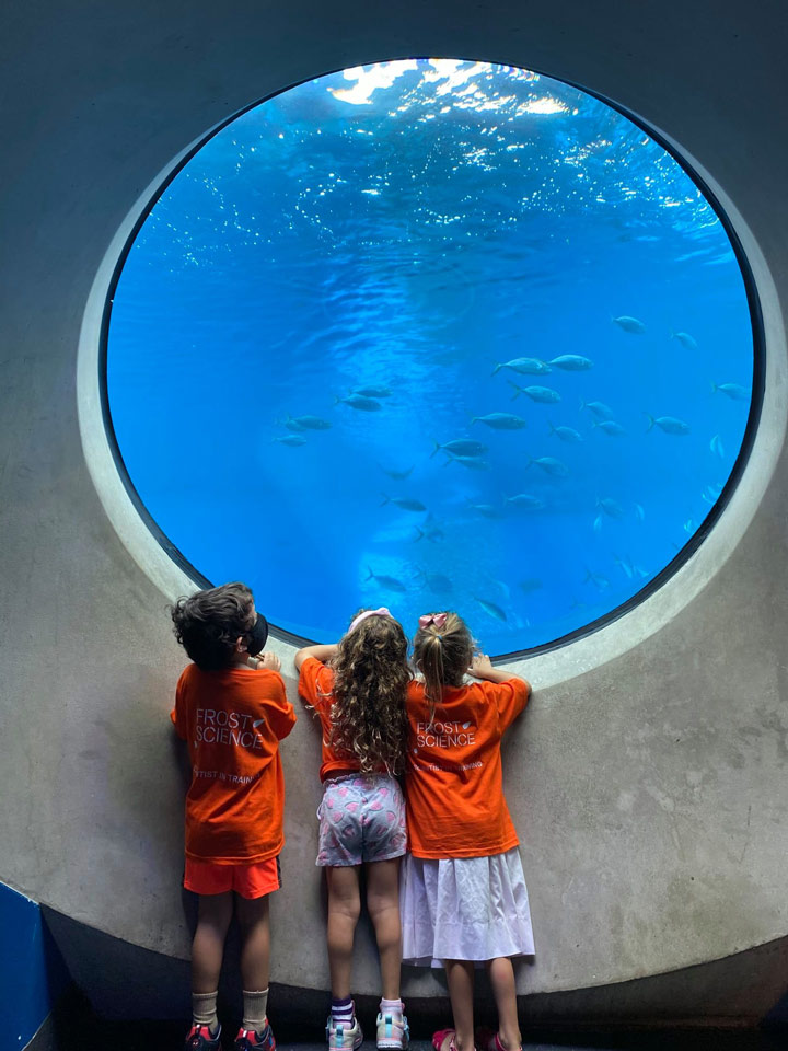 Get curious at the Phillip and Patricia Frost Museum of Science Top Things to do in Miami in 2021