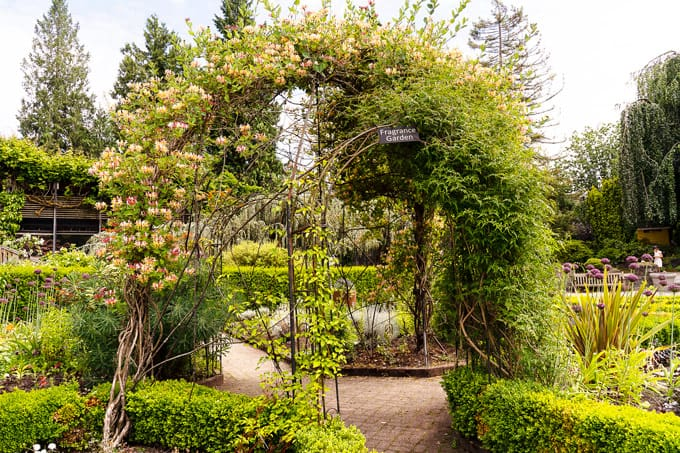 VanDusen Botanical Garden Vancouver: What to See and Where to Eat